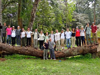 Kakamega group